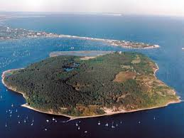 poole holidays brownsea island things to do