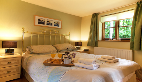 holiday home in studland bedroom