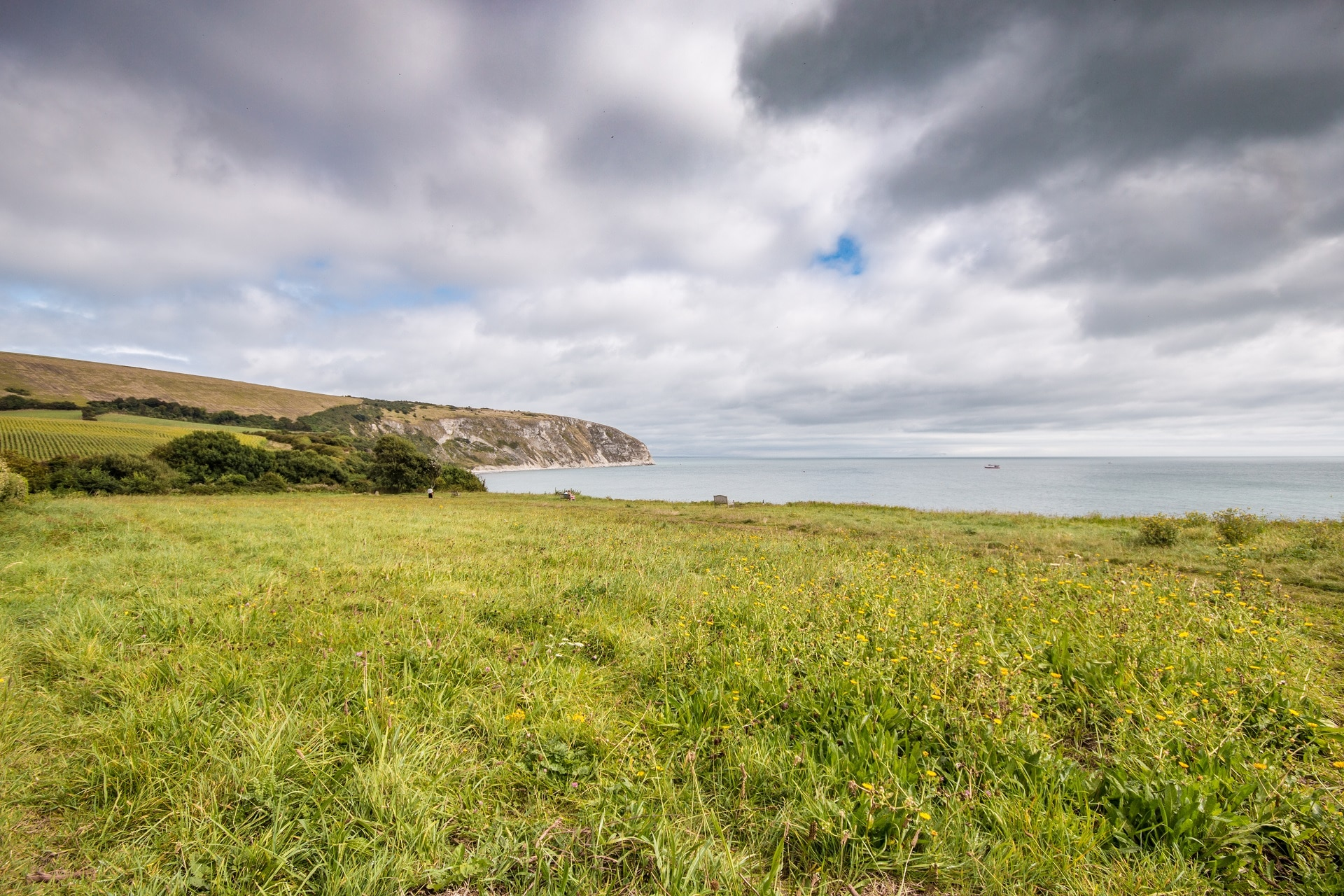 pet friendly sea view swanage cliff